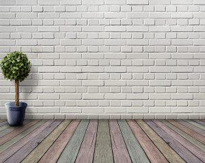 קיר לבן עם עציץ