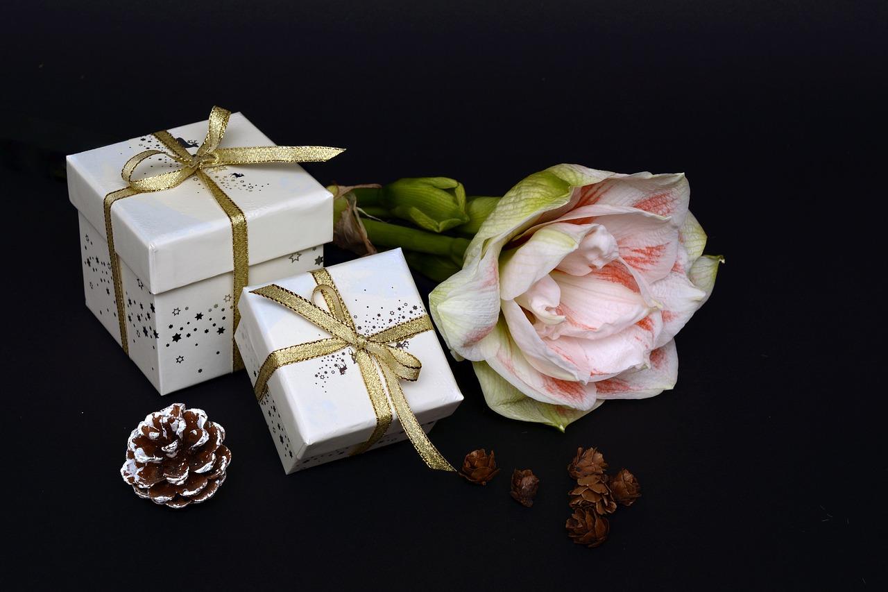 פרח וזוג מתנות